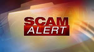 scam alert Is the Life Coaching Business a Scam?