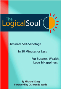 LS 206x300 Logical Soul Training Course Available